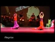 Obra Flamenca